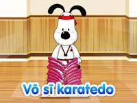 Võ sĩ karatedo