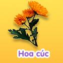 Hoa cúc - Bộ 1
