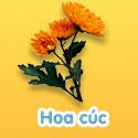 Hoa cúc - Bé thách đố