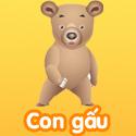 Con gấu - Bộ 2