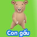 Con gấu - Bộ 3
