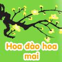 Hoa đào Hoa mai - Bộ 2