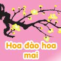 Hoa đào Hoa mai - Bộ 3