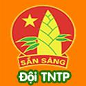 Đội TNTP - Bộ 3