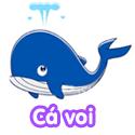 Cá voi - Bộ 1