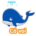 Cá voi - Bộ 2