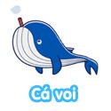 Cá voi - Bé thách đố