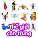 Thế giới côn trùng - bộ 1