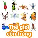 Thế giới côn trùng - bộ 2