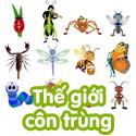 Thế giới côn trùng - bộ 3