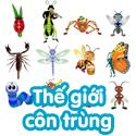 Thế giới côn trùng - bé thách đố