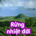 Rừng nhiệt đới Bộ 1