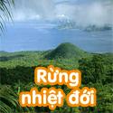 Rừng nhiệt đới Bộ 2