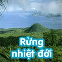 Rừng nhiệt đới Bé hỏi