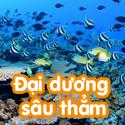 Đại dương sâu thẳm- Bộ 2