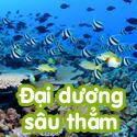 Đại dương sâu thẳm- Bộ 3