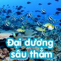 Đại dương sâu thẳm- Bộ BTD