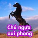 Chú ngựa oai phong - Bộ 1