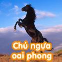 Chú ngựa oai phong - Bộ 2