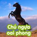 Chú ngựa oai phong - Bộ 3
