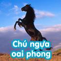 Chú ngựa oai phong - BTĐ