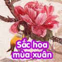 Sắc hoa mùa xuân - Bộ 1