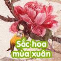 Sắc hoa mùa xuân - Bộ 3