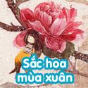 Sắc hoa mùa xuân - BTĐ