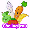 Các loại rau - Bộ 1