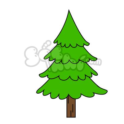 Vẽ cây thông
