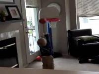 Bé 2 tuổi chơi bóng rổ cực siêu