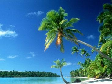 Biển đảo quê em