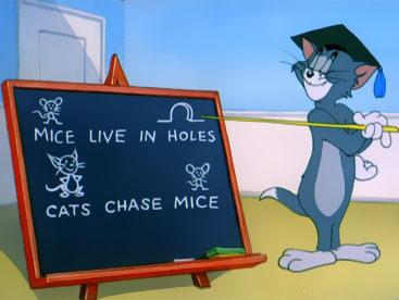 Khi mèo Tom làm giáo sư
