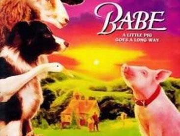 Chú lợn Babe