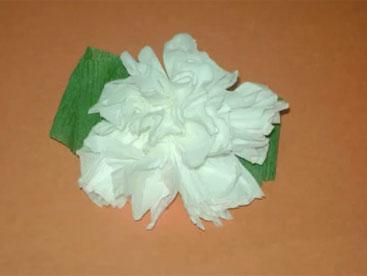 Cùng gấp hoa cẩm chướng nhé