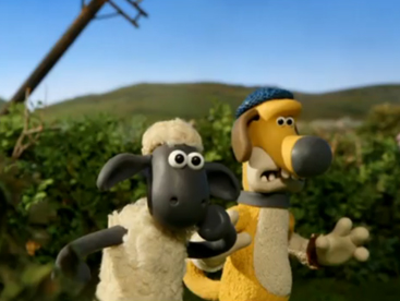 Shaun and Sheep