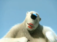 Gấu béo hát nhép