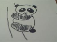 Vẽ gấu trúc