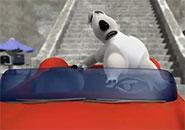 Gấu Bernard: Đua xe