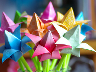 Tập gấp bông hoa tulip
