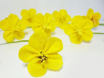 Gấp hoa mai vàng bằng vải dạ