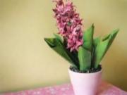 Gấp hoa lan từ giấy