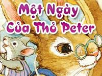 Một ngày của thỏ Peter